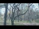 ALEXANDER NOVIKOV - Best moments 2012 (S.U.F.)