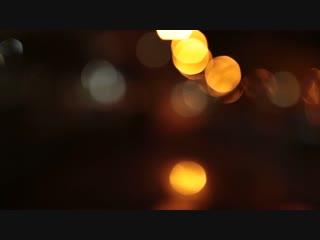 Ночная Ботаника