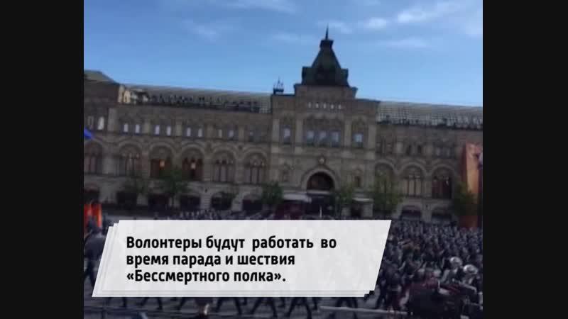 В России стартовал конкурсный отбор Послов Победы