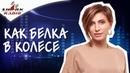 Елена Адамова Как жить Активной Жизнью в режиме загнанной белки и не выпасть из колеса