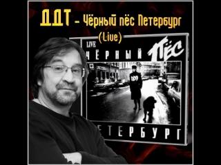ДДТ− Черный пес Петербург
