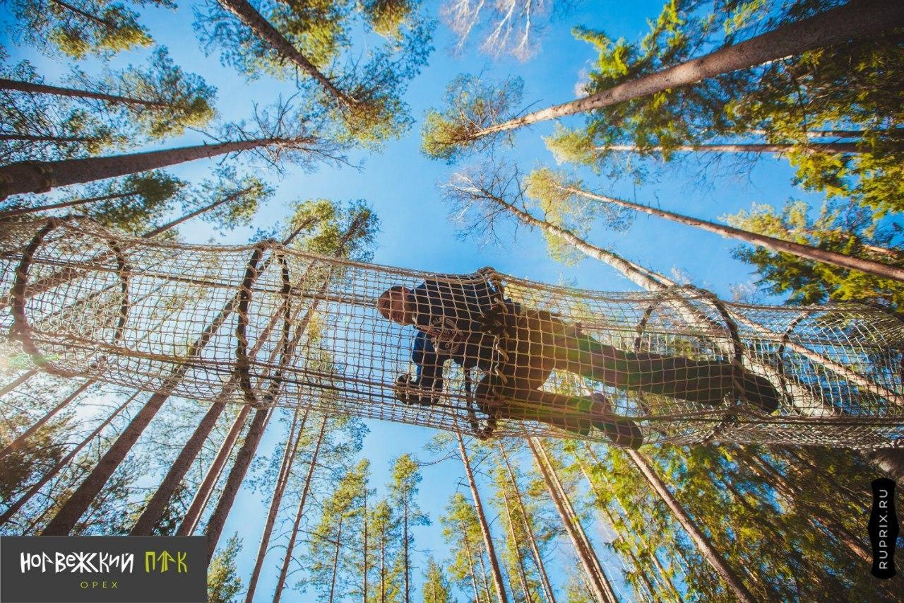 Веревочные парки Петербурга и Ленобласти