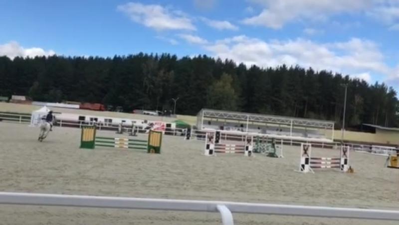 Пепел, 90 см, Белая лошадь-Екатеринбург
