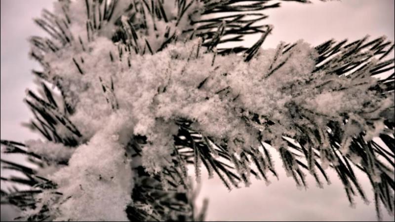 Со Старым Новым Годом ( Испол. Евгений Дога ) Зимний вальс