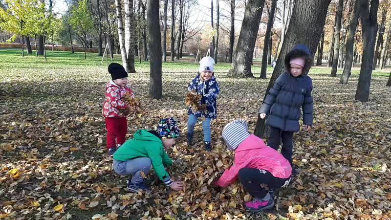 дети и листья