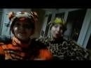 Мой братан Тигр непоседымы