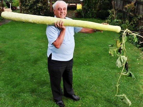 Самый длинный член фото в мире