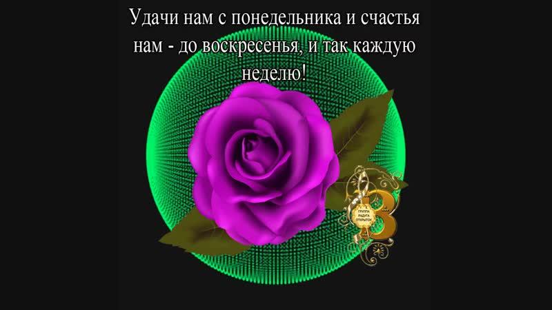Doc308355082_490549133.mp4