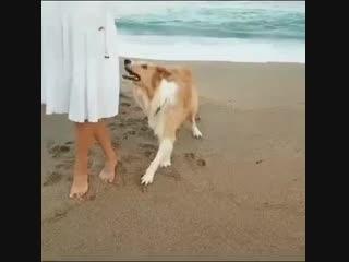 tango near the sea