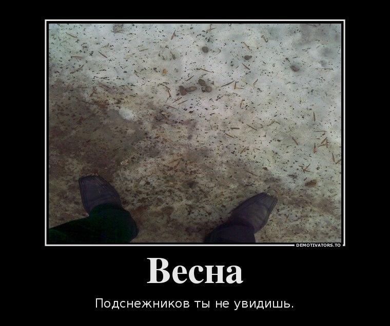 Слова песни русские матрешечки этом особенного