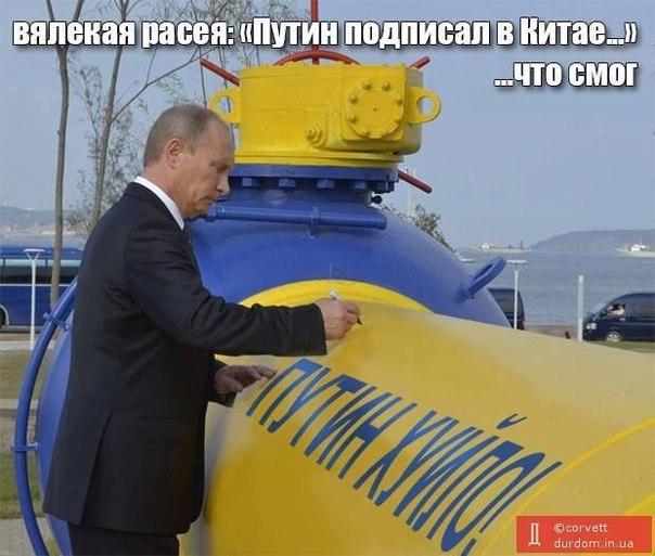 Путин может остановить войну в Украине одним телефонным звонком, - посол США Пайетт - Цензор.НЕТ 7595