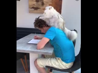 """""""let me help you study....brian i said we are studying"""""""
