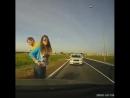 Осторожно, олени на дороге