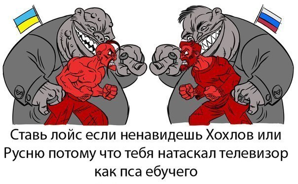 http://cs7061.vk.me/c7003/v7003280/bec2/ZrzXVoSCZ7w.jpg