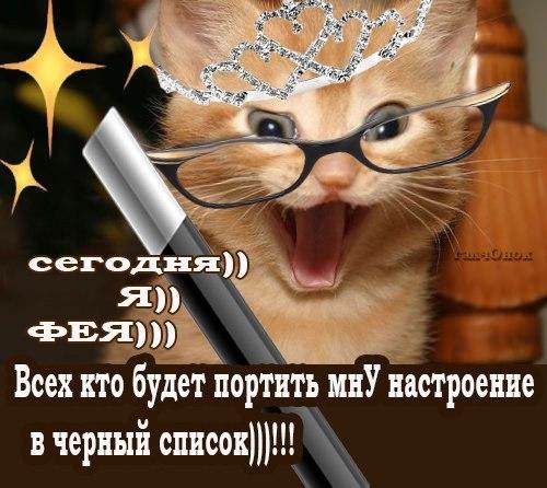 Викторины - 2008. Конкурсы на 7я.ру