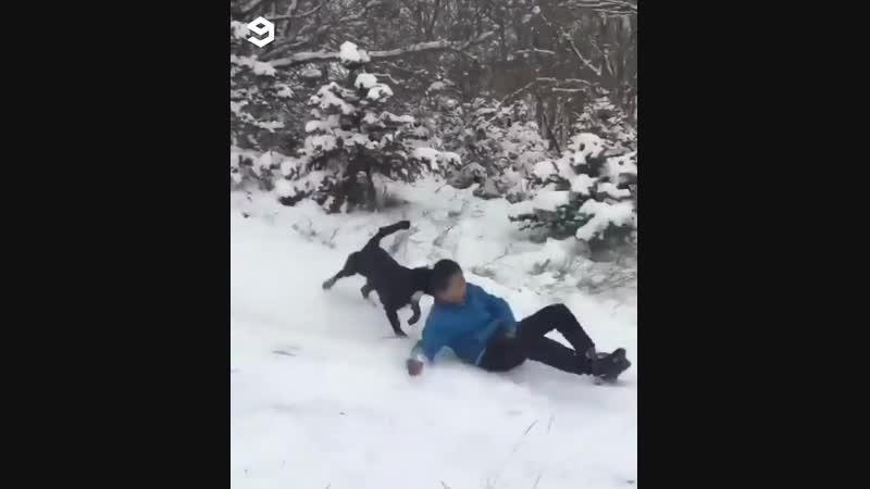 Зима - время веселиться pbvf - dhtvz dtctkbnmcz