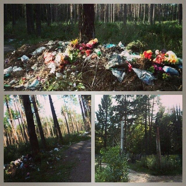 Кладбище мусора