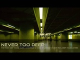 Never Too Deep 2016 Mixed By Johnny M For Real Deep House Lovers