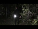 Лес самоубийц. Шёпот призрака?. В поисках призрака