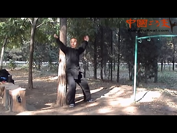 Learn real kung fu- baji quan training free lesson for you