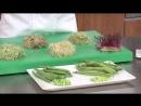 1.04. Brotes germinados variedades, estacionalidad, usos (guisantes, habas, soja…)