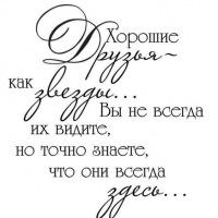 Денис Колиенко, 15 ноября 1995, Донецк, id161419503