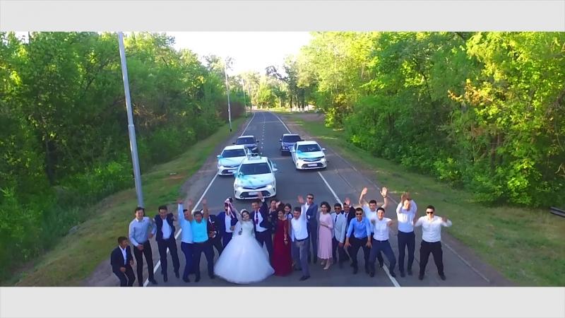 The Wedding highlights Z M