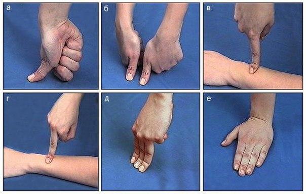 Лечим себя. Упражнения для пальцев шиацу… (3 фото) - картинка
