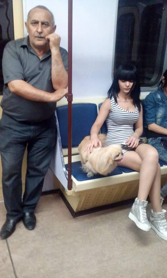 Фото девушки с собачкой 19 фотография