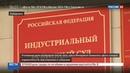 Новости на Россия 24 • Хабаровских живодерок отправили под домашний арест