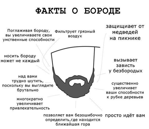 Смедвед Святогоров |