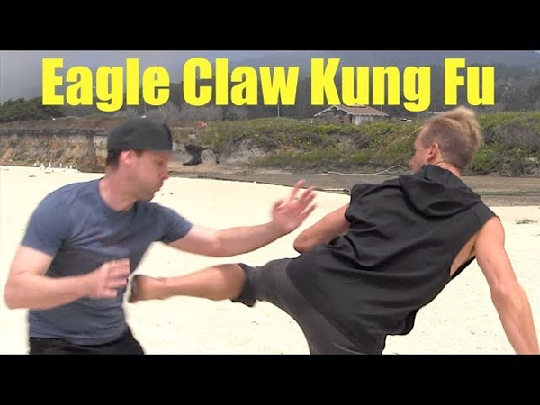 Eagle Claw Kung Fu for Street Fighting