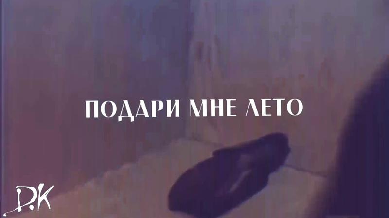София Ротару - Подари мне лето (фан-видео, 2018)
