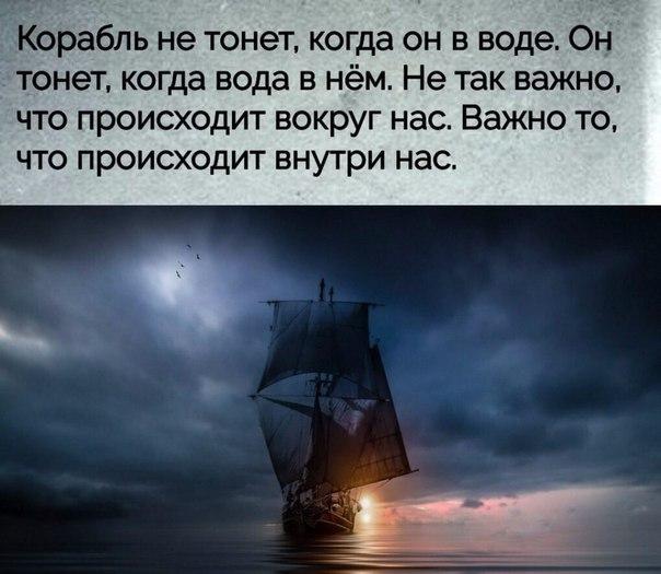 Фото №456255023 со страницы Михаила Каликина