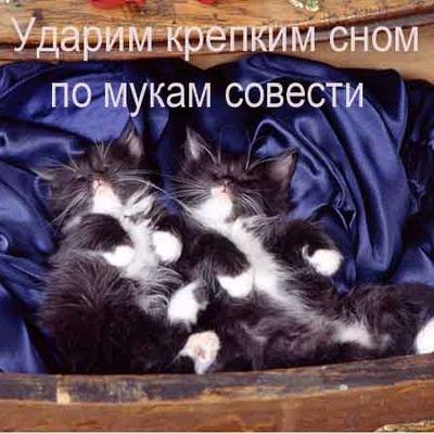 Наталья Цыцей, 25 апреля , Новосибирск, id208674889