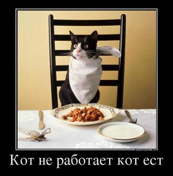 http://cs405623.userapi.com/v405623381/12e/KAFn7vxJRX0.jpg