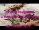 Фильм презентация Аида Низамутдинова и Цветок Индиго