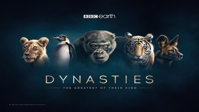 Династии (Дэвид Аттенборо) 4 серия / Dynasties (David Attenborough) / 2018