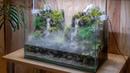 Making an Aquaterrarium with two flowing waterfalls【滝の飛沫を再現したい】