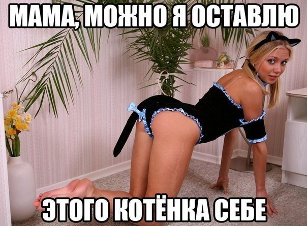 ава вконтакте: