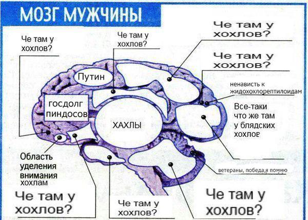 Убийство Карлова - это не терроризм, а расплата за военные преступления Путина. Это лишь осуществление правосудия, - американский журналист - Цензор.НЕТ 1006