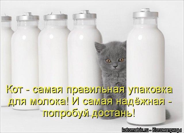 http://cs319319.userapi.com/v319319085/2379/HK9cZaX_MXM.jpg