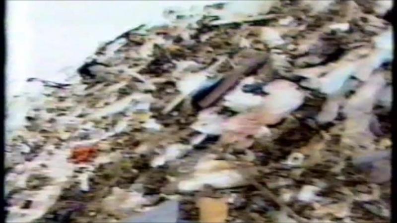 Экологические акции в России (1990-1991)