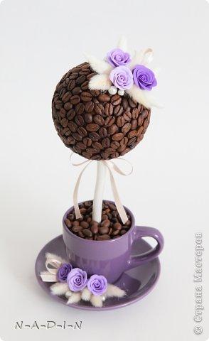 Кофейный топиарий  Автор: N-A-D-I-N