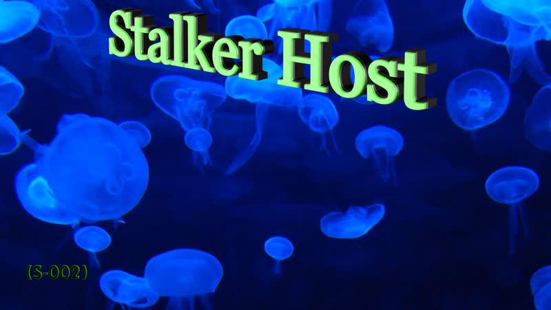 Stalker Host проект 3D (S-002) сюжет игры