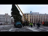 Вологда: елка и прораб