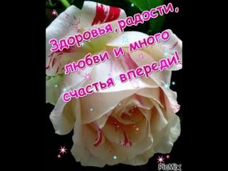 doc477325317_472960958.mp4
