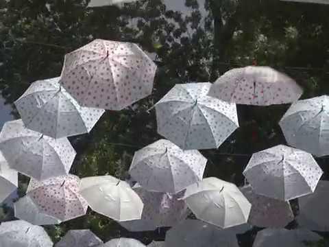 ГТРК ЛНР. Новость дня. Зонтики. 23 июня 2018