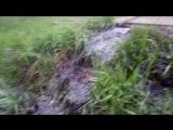 Коммунальная авария в Бердске река из фекалий течет в Речкуновке