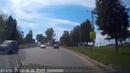 В Щекине автомобилист спас котенка от неминуемой гибели на дороге